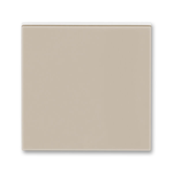 ABB 3559H-A00651 18 Kryt jednoduchý
